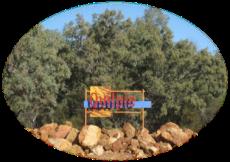 Quilpie sign